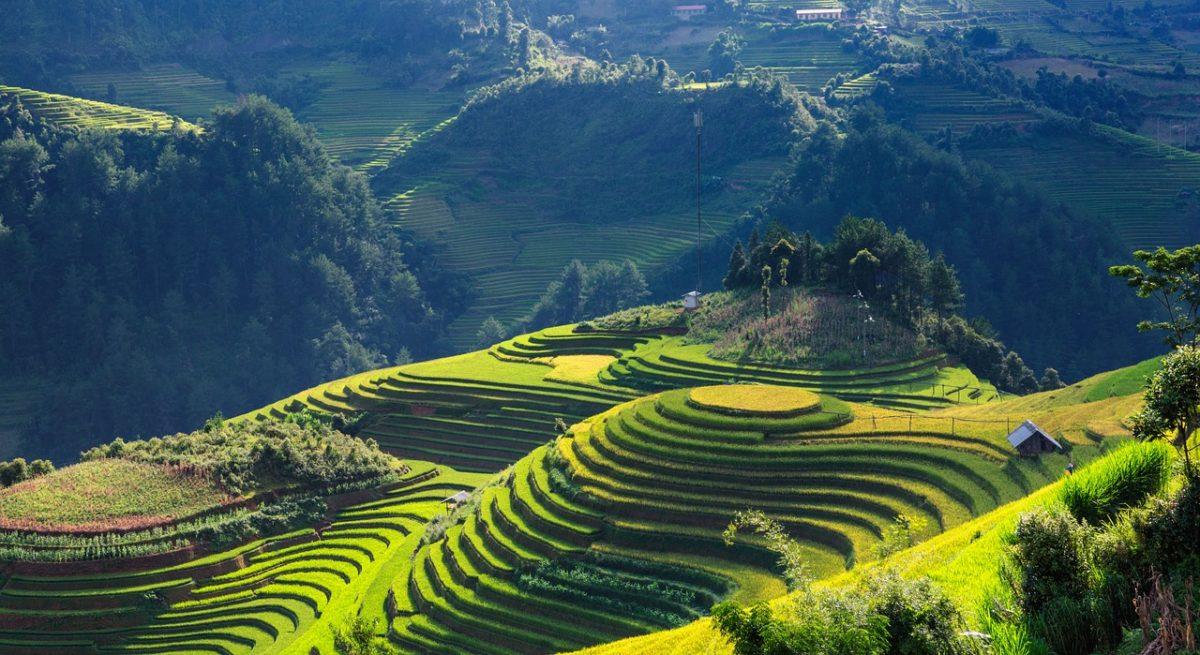 Vietnam zpáteční letenky za 7.790 Kč